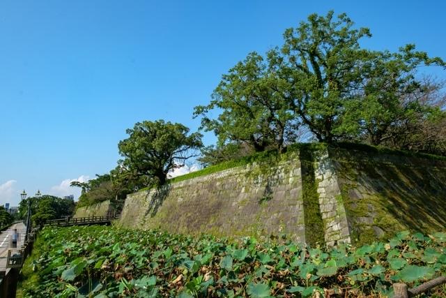 kagoshima-4044s