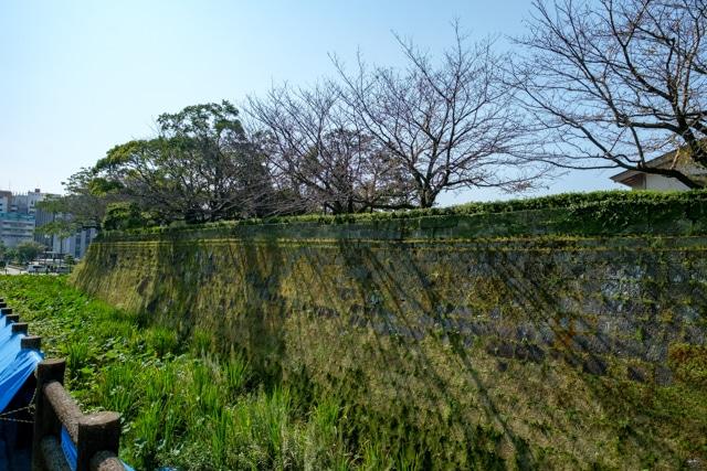 kagoshima-4054