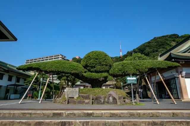 kagoshima-4073