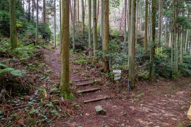 takatori2-5365