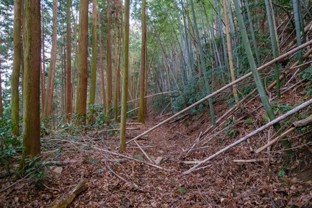takatori2-5392