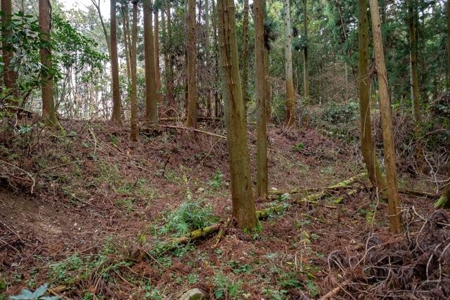 takatori2-5656