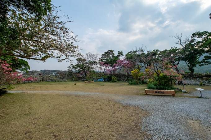 nakijin-8277