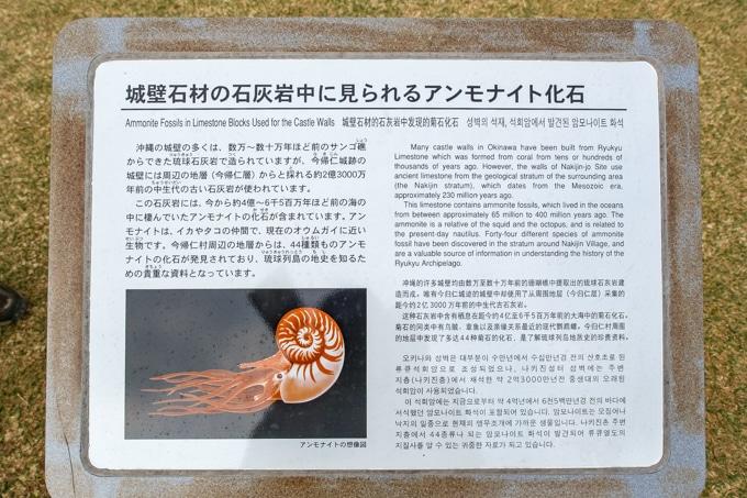 nakijin-8359a-8361