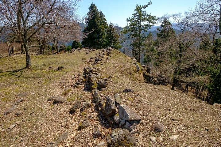 tajima_yagi-2402