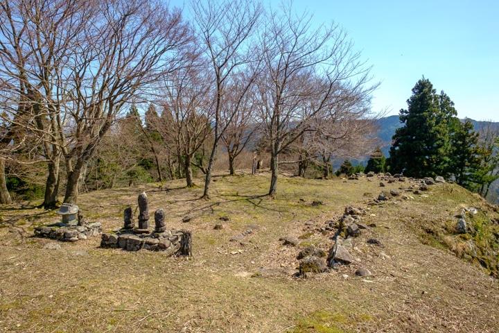 tajima_yagi-2403
