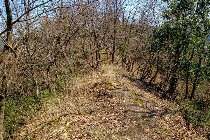 tajima_yagi-2413