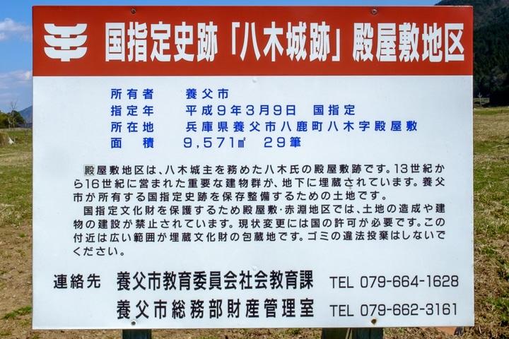 tajima_yagi-2483