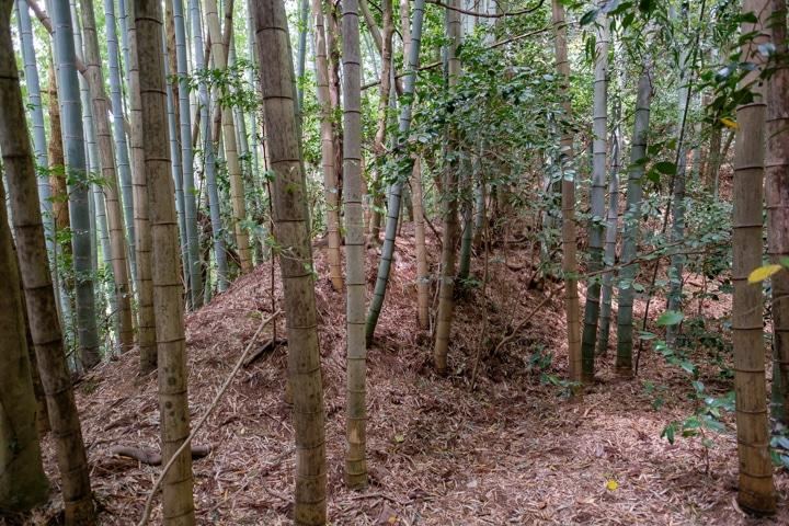 kaburamaru-0841