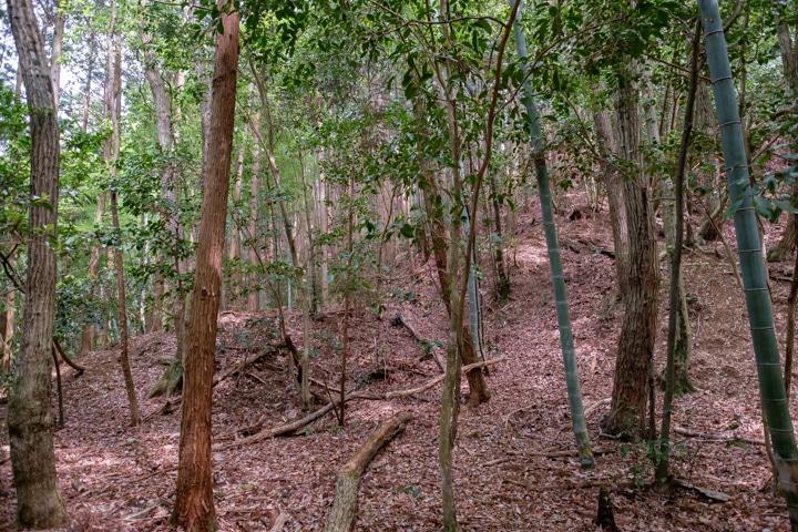 kaburamaru-0844