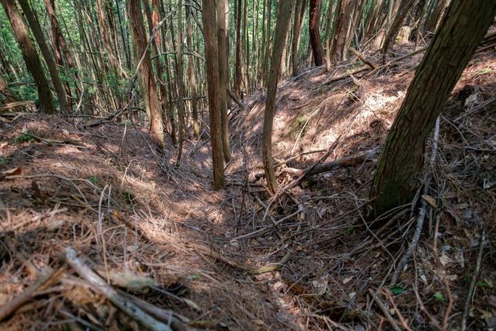 yakamijo-0814