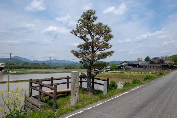 yakamijo-0825