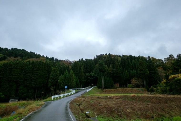 masuyama-7353