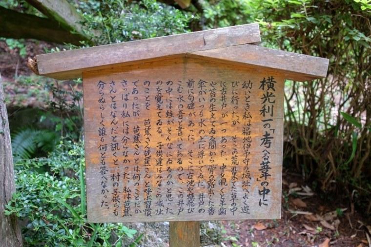 fukuchijo25-4100