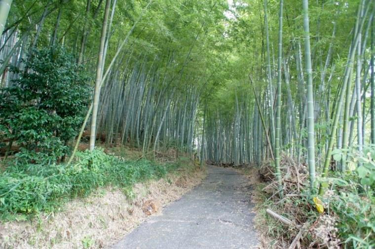 sekigahara028-03074