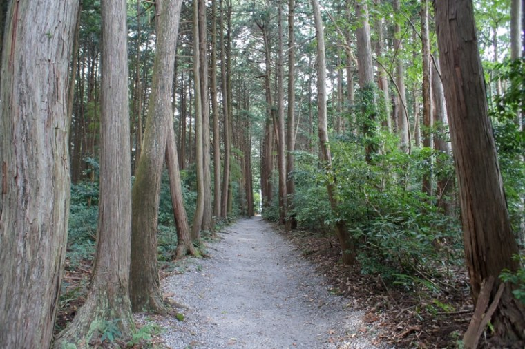 sekigahara095-03140