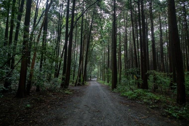 sekigahara103-0663