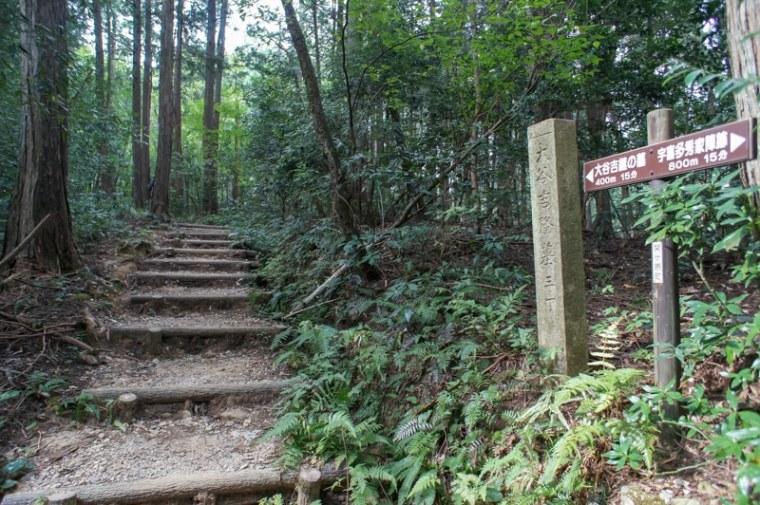 sekigahara112-03165