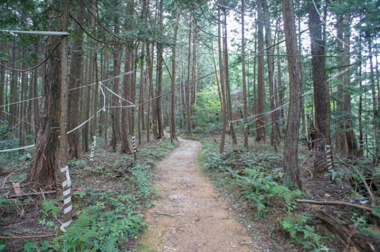 sekigahara113-03166