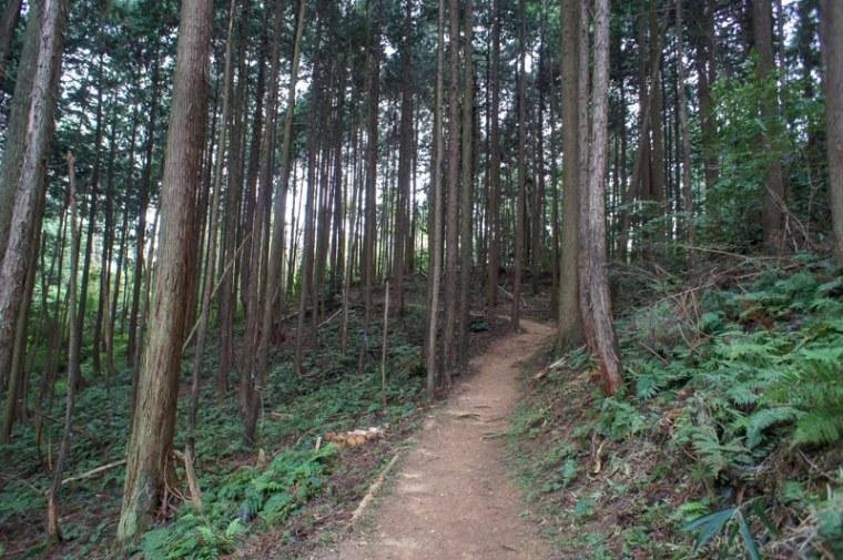 sekigahara119-03176