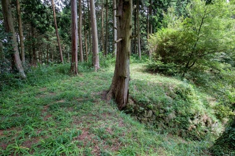 fukuchijo34-4110