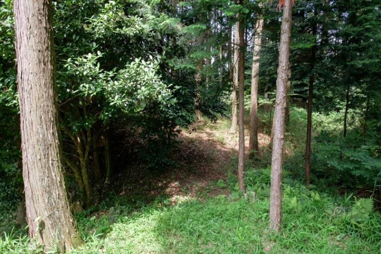 fukuchijo44-4135