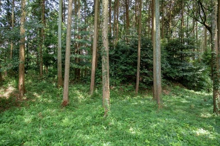 fukuchijo49-4143