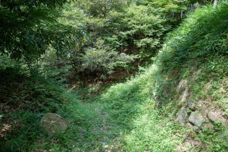 fukuchijo53-4151