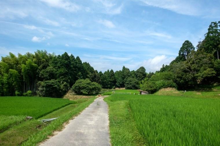 fukuchijo56-4156