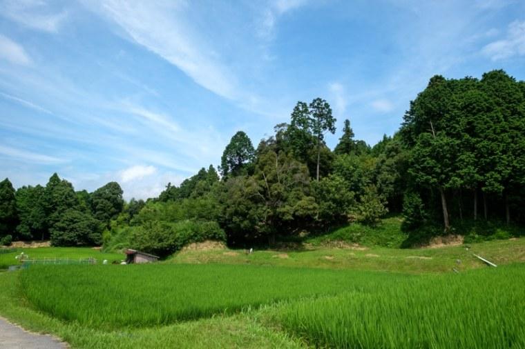 fukuchijo57-4157