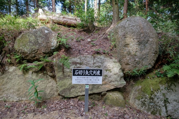 mikumo-22_4648
