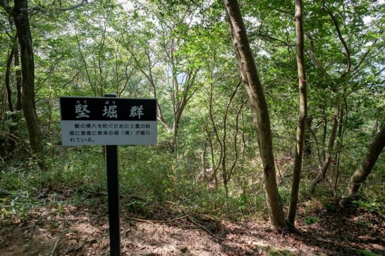 mikumo-34_4672
