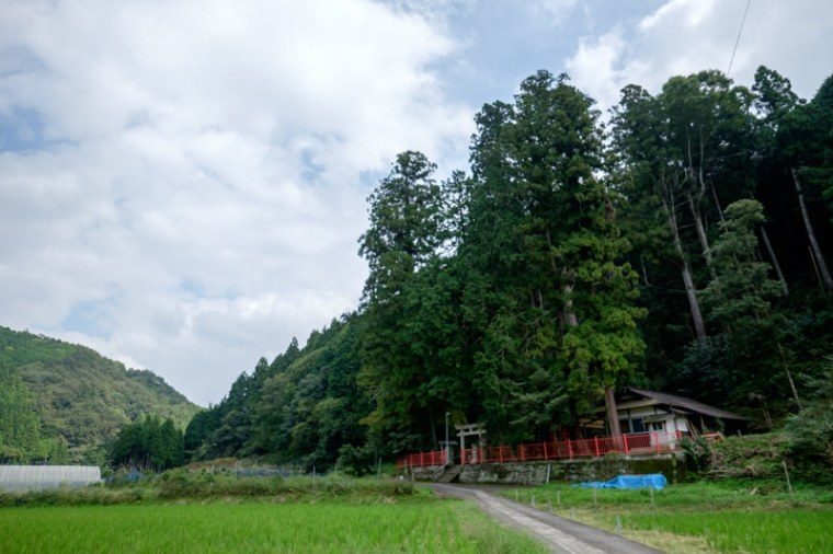 uda_houno-6422