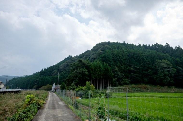 uda_houno-6425