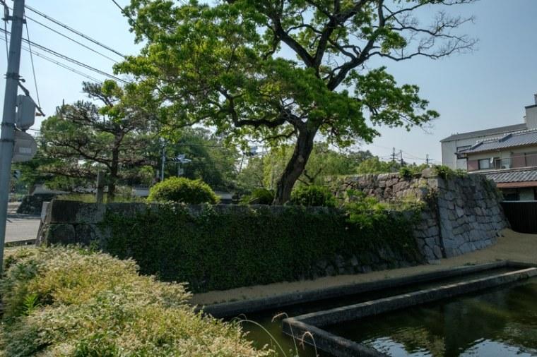 yamato_koriyama_115-2156
