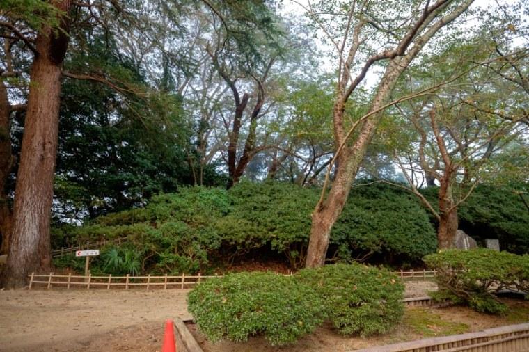 komaruyama_11-7293