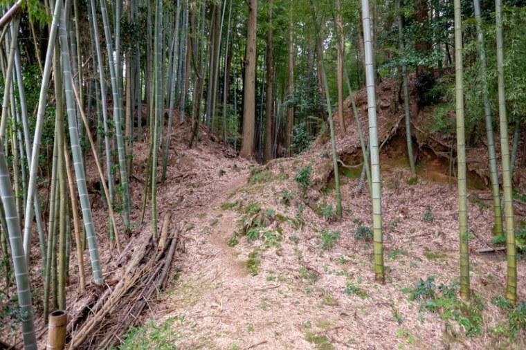 mochizuki-jo_05-8072
