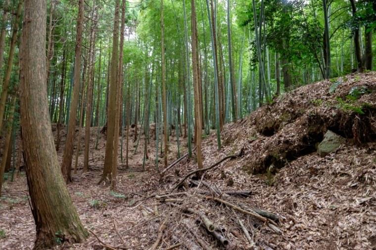 mochizuki-jo_07-8075