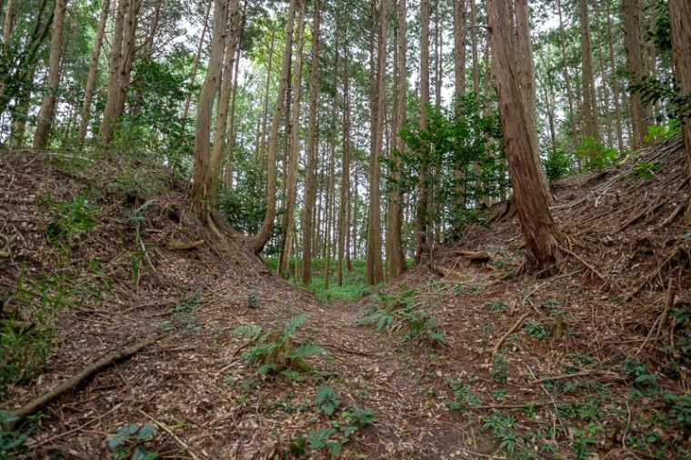 murasame_08-8176