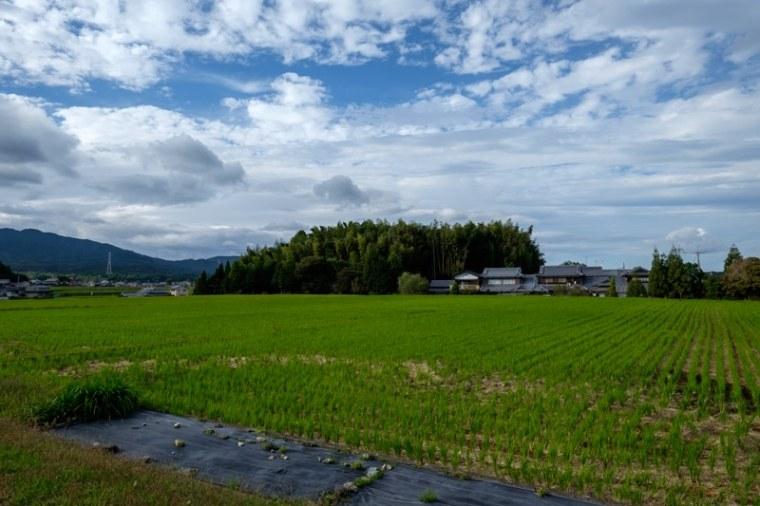 takenaka-jo_01-8297