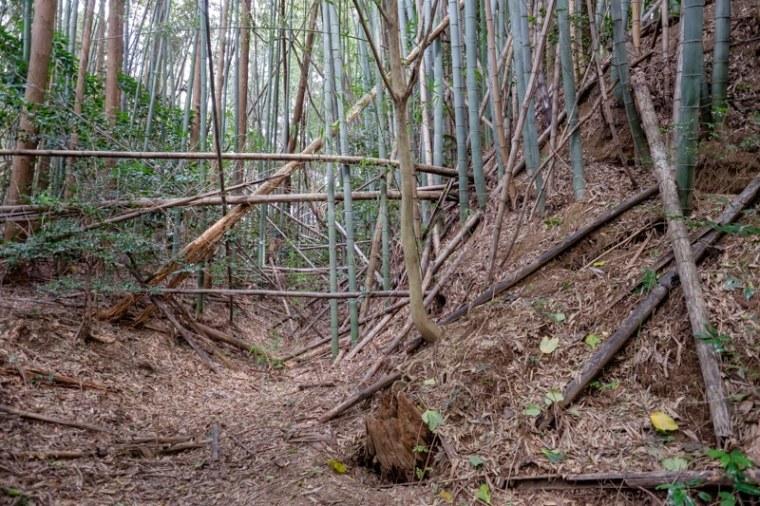 takenaka-jo_12-8314