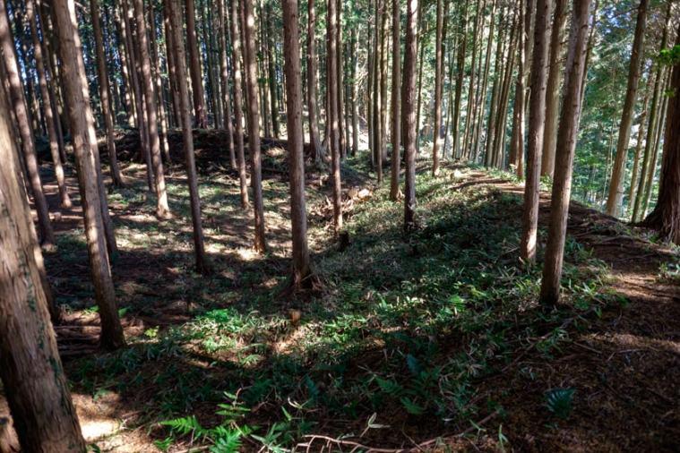 furumiya_57_9983
