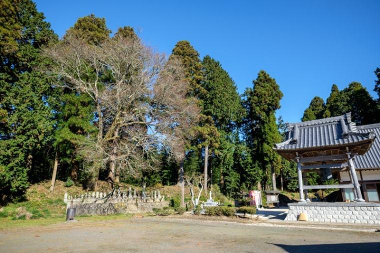 ishibashi-jo_03_9697