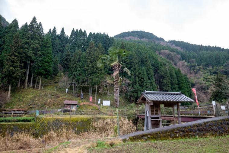 nagaiwajo-05_3544