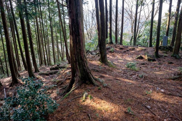 nagaiwajo-84_3690
