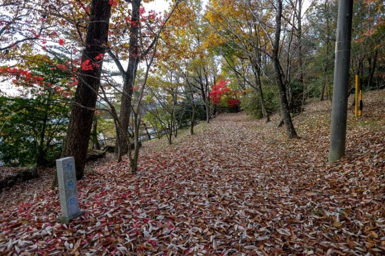 akechi_nagayama-20_9291