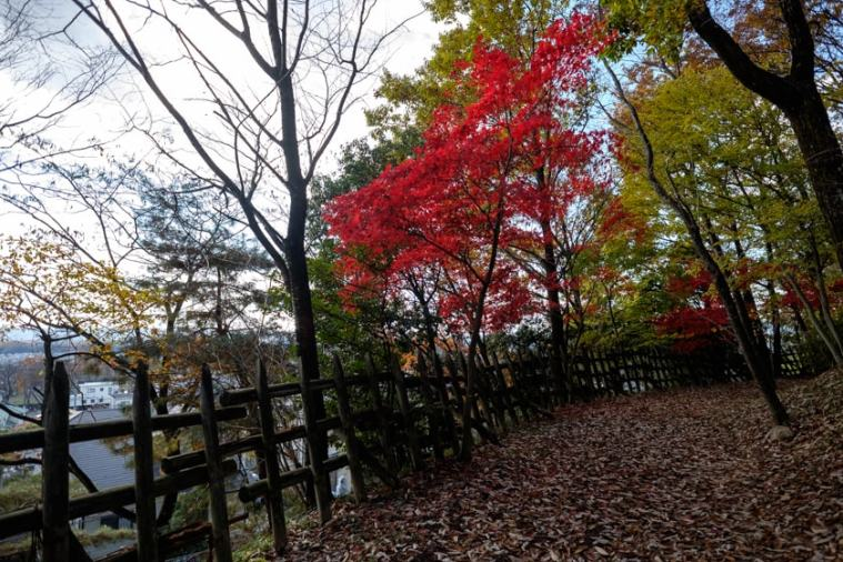 akechi_nagayama-22_9294