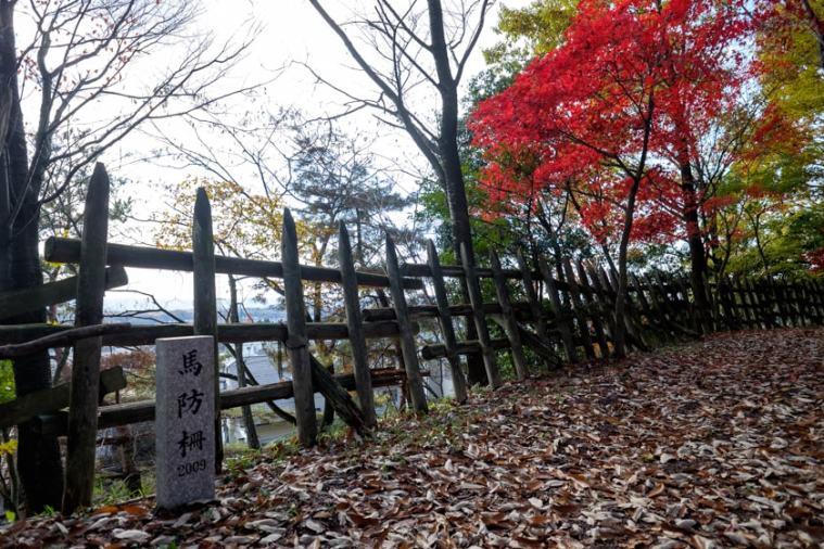 akechi_nagayama-23_9295