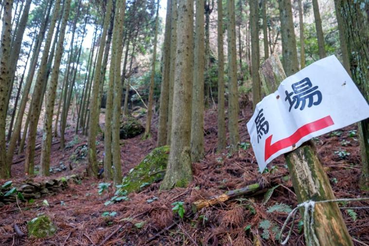 nagaiwajo-122_3753