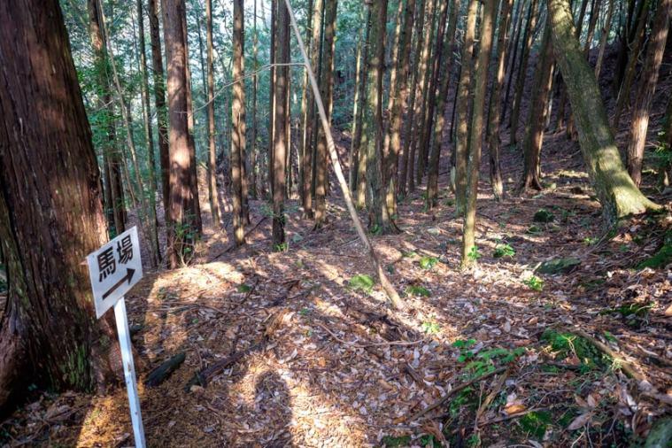nagaiwajo-126_3758